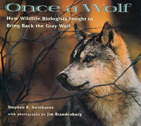 Download Once a wolf