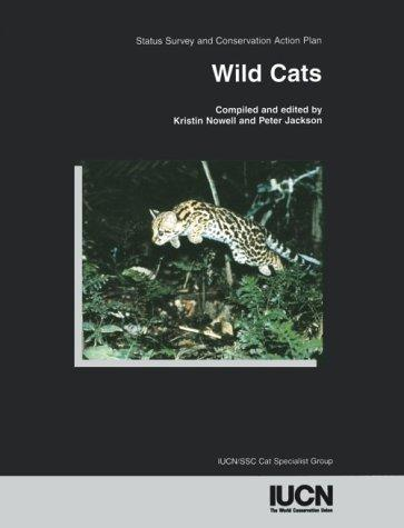 Wild cats by